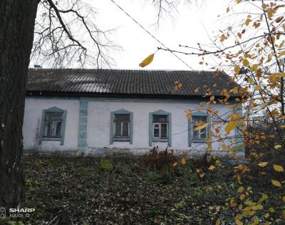Дом в д. Рига-Васильевка